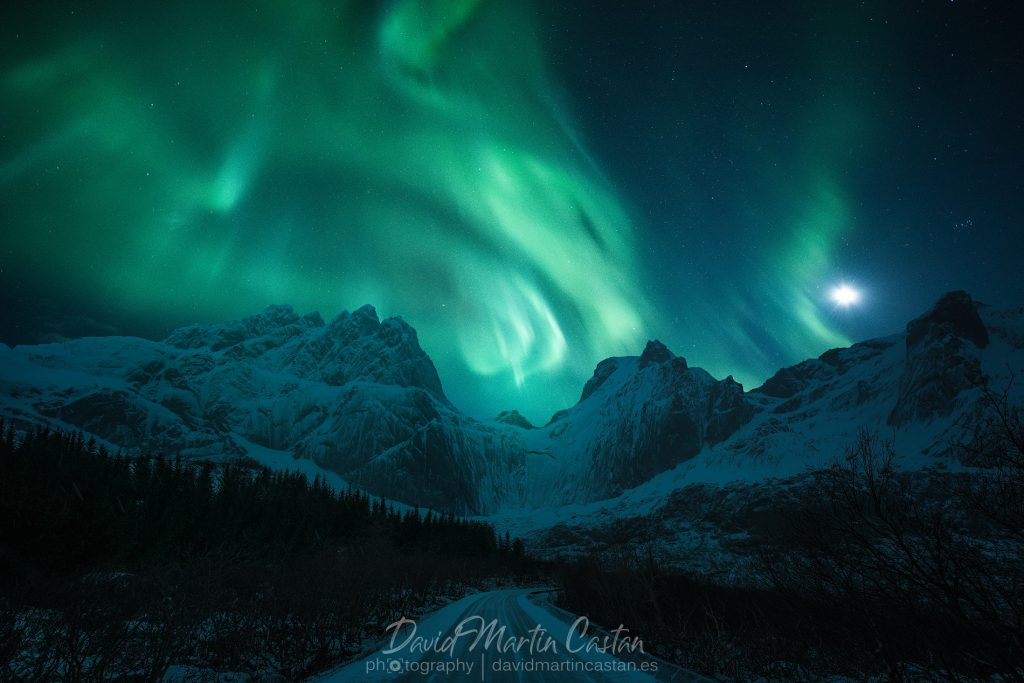 Aurora Boreal en Lofoten